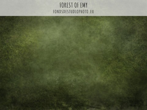 Forest of Emy